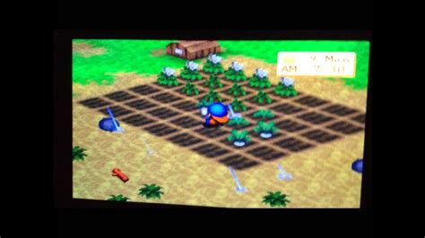 Harvest Moon Back To Nature PS Vita Gameplay Year 1 - YouTube